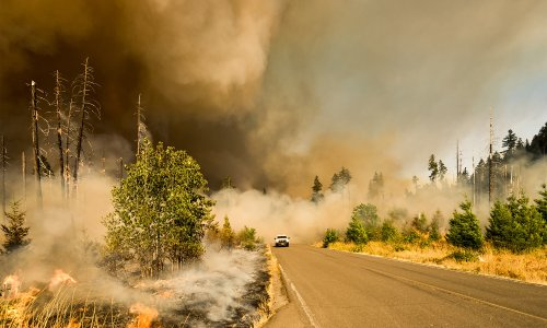 Here's how wildfire smoke affects the body — and how you can protect yourself
