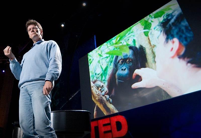 "Transcript of ""How to restore a rainforest"""