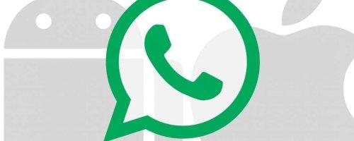 WhatsApp lavora al passaggio automatico da Android ad iOS e viceversa