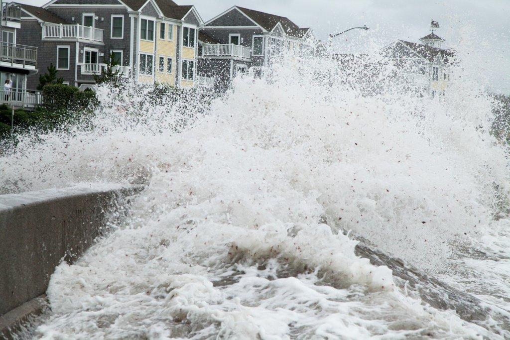 hurricane impact doors - cover