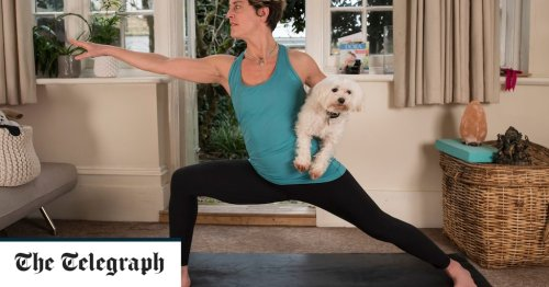 I thought raw food diets and yoga for dogs were ridiculous - but then I tried them
