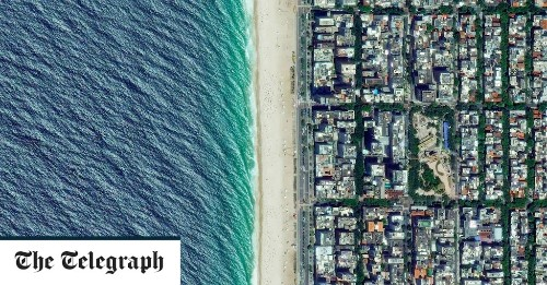 14 photographs that reveal the beautiful symmetry of life on Earth