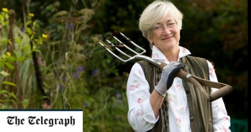 What are the best garden tools? Try these tips from an expert