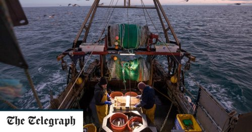 EU accused of 'land grab' by fishermen as they increase use of 'destructive' fly-shooting boats in UK waters