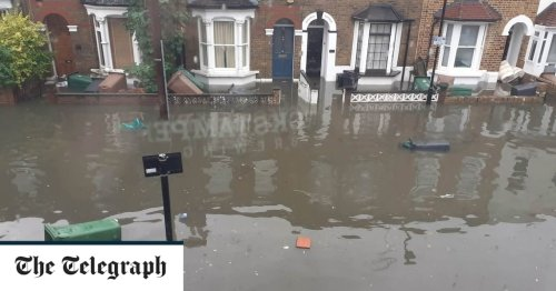 Plug sockets should be higher up the wall to make homes more flood resilient, says environment boss