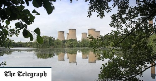 Drax pays farmers to grow 'energy crops'