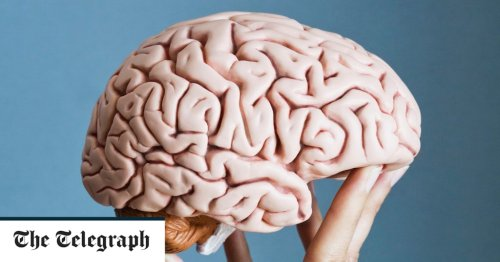 Forget sudoku - here's how to keep your brain young