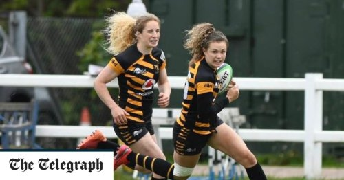 Wasps head into play-offs in fine form after thrashing Bristol