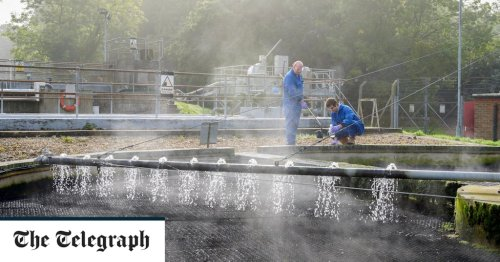 Covid could be spread through flatulence, say ministers