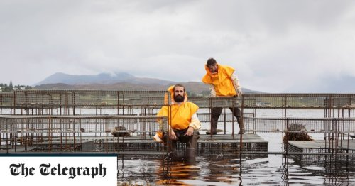 Seaweed-foraging environmentalists shortlisted for Turner Prize