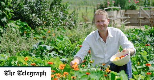 How to create a thriving vegetable patch this spring – and what to grow right now