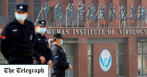 Revealed: How scientists who dismissed Wuhan lab theory are linked to Chinese researchers