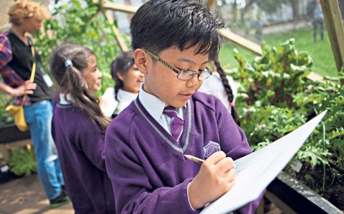 The outdoor classroom where pupils grow in so many ways