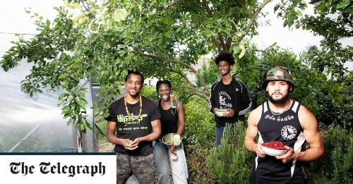 The community garden aiming to get disadvantaged young people growing, with help from hip hop