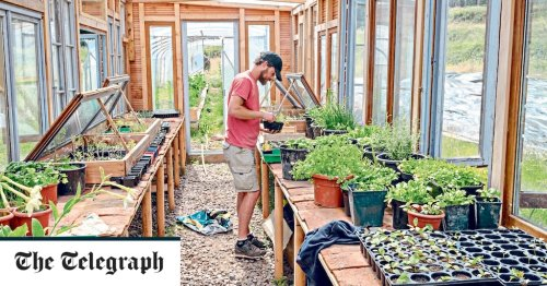 Spring jobs to do in the garden - but don't jump in too early