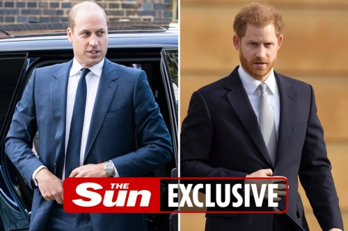 Warring Harry & William call truce for Diana - but are 'further apart than ever'