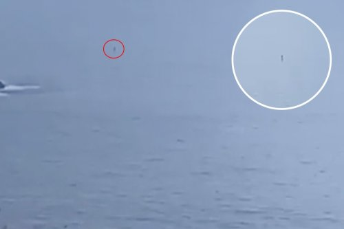 Woman left baffled by 'unidentified object' off the coast of Cornwall