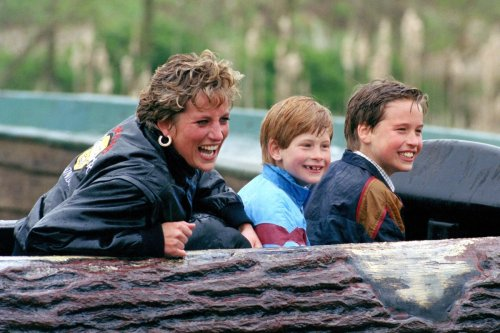 Diana made Harry and William 'promise to be best friends' and 'never let anyone come between them', expert recalls