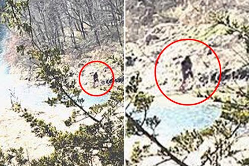 'Bigfoot' sighting revealed in shock pics that show creature crossing Iowa river