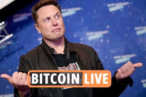 Crypto stocks bounce back after $6bn drop following Elon Musk's Tesla ban