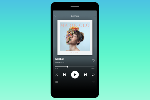 Genius Spotify update lets you hide embarrassing songs in playlists