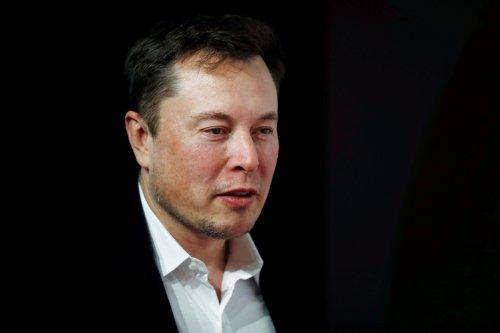 Elon blasts lockdown as 'FASCIST' and slams YouTube for censoring doctors' video