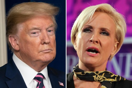 Morning Joe's Mika Brzezinski calls Trump an 'idiot and a moron' in wild attack over president's press briefing