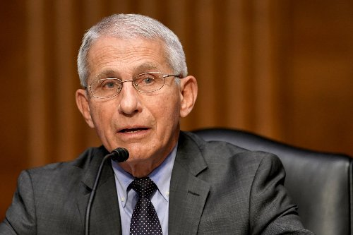 Fauci dismissed China Covid cover-up warning email as 'too long to read'