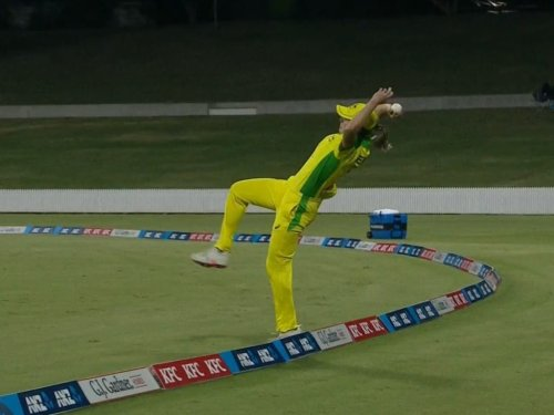 Ellyse Perry unbelievable effort on boundary leaves cricket world stunned