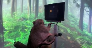 A monkey playing Pong is the first demonstration of Neuralink, Elon Musk's project to connect the brain with computers