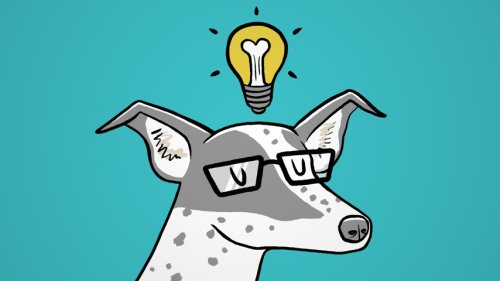 The 'Special Genius' of Dogs