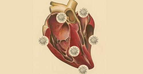 The Core Lesson of the COVID-19 Heart Debate