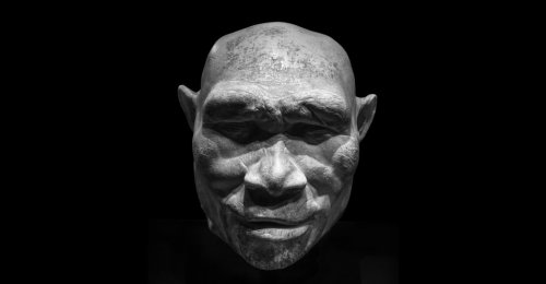 The Mystery of Why Our Ancestors Left Africa
