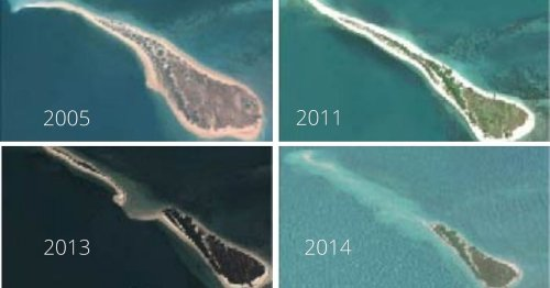 How Scientists & IITians are Preventing an Island from Drowning off the TN Coast