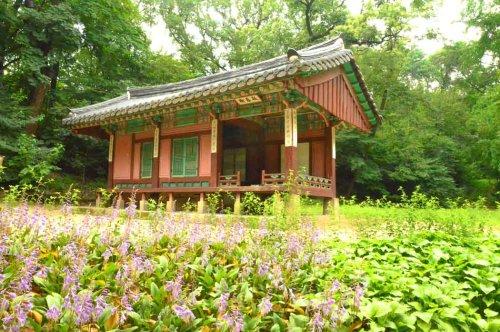 Korea Itinerary: 14 days in South Korea