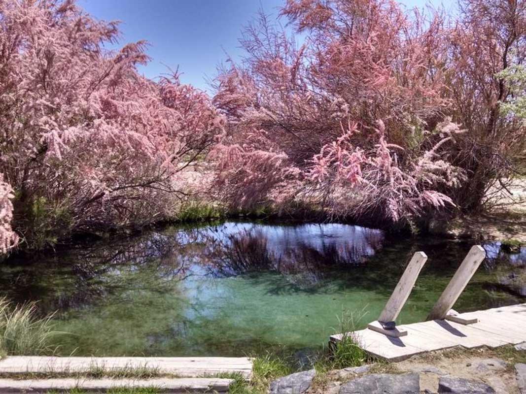23 Fantastic Hot Springs in Nevada You'll Love