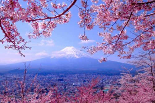 What is Japan Famous For? 31 Japanese Claims to Fame