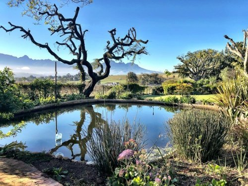 Best Wine Tours Stellenbosch