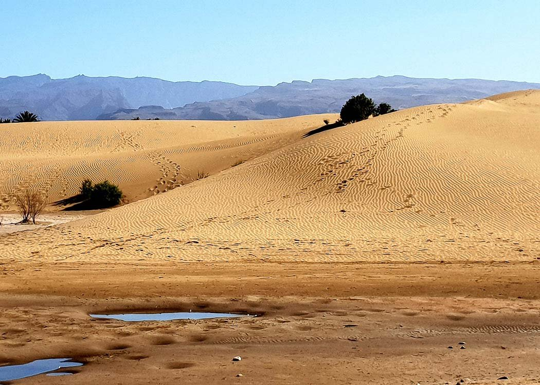 8 Best Things to do in Maspalomas Gran Canaria for Adults