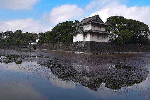 Hidden Gems & Classics: One Day in Tokyo