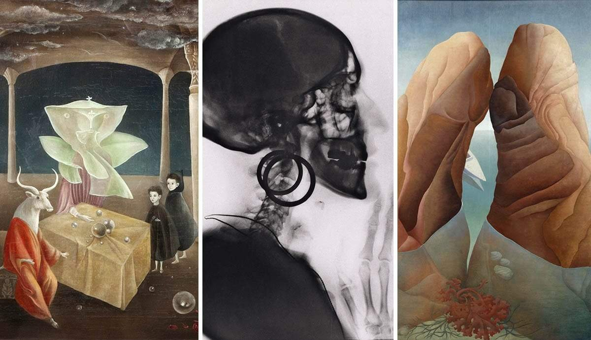7 Incredible Female Surrealist Artists That Aren't Frida Kahlo