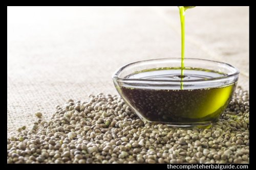 5 Evidence-Based Health Benefits Of Hemp Seed Oil - The Complete Herbal Guide