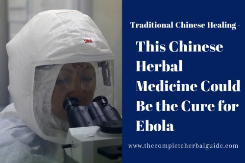 This Chinese Herbal Medicine Could Be the Cure for Ebola