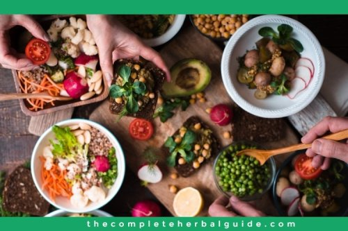 Basics of Veganism and The Impact It's Having In Our World