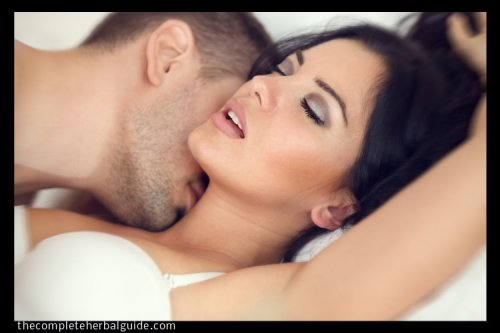 Hypersexuality (Sex Addiction): Signs, Symptoms, Causes, and Treatment - The Complete Herbal Guide