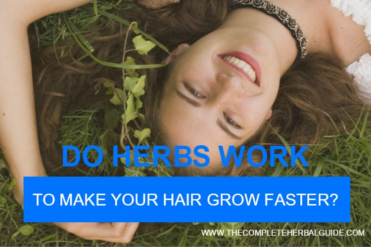 Top Five Herbs for Enhancing Hair Growth - The Complete Herbal Guide