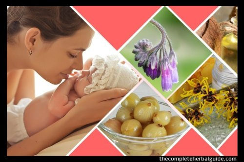 Top 5 Herbal Remedies for New Moms