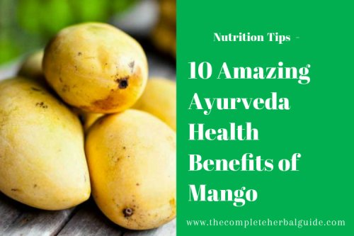 10 Amazing Ayurveda Health Benefits of Mango - The Complete Herbal Guide