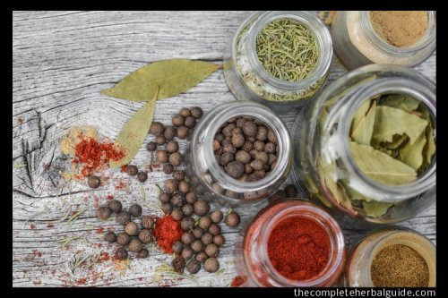 Top 5 Best Herbs for Weight Loss - The Complete Herbal Guide