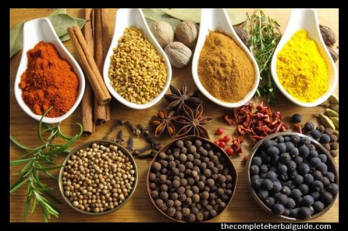 Top 5 Cancer Beating Herbs - The Complete Herbal Guide
